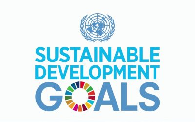 The UN Agenda 2030 Sustainable Development Goals (SDGs)
