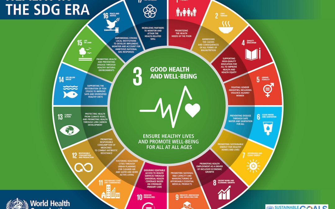 Physiotherapy and the Sustainable Development Goals – A students perspective